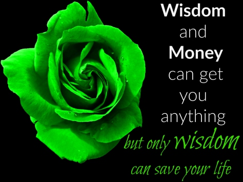 Quote on wisdom and money